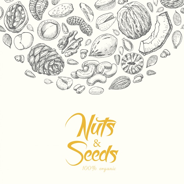 Vector background with nuts and seeds Premium Vector