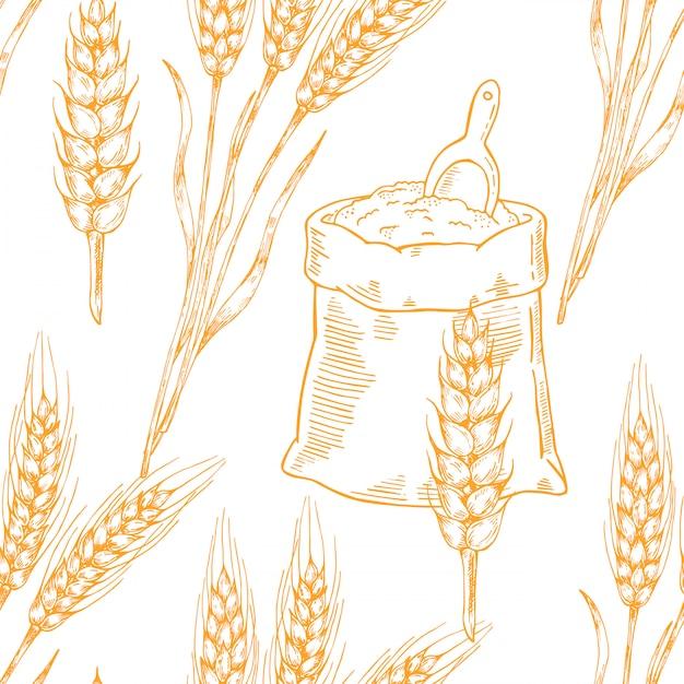 Vector beer seamless pattern illustration ears of wheat. Premium Vector