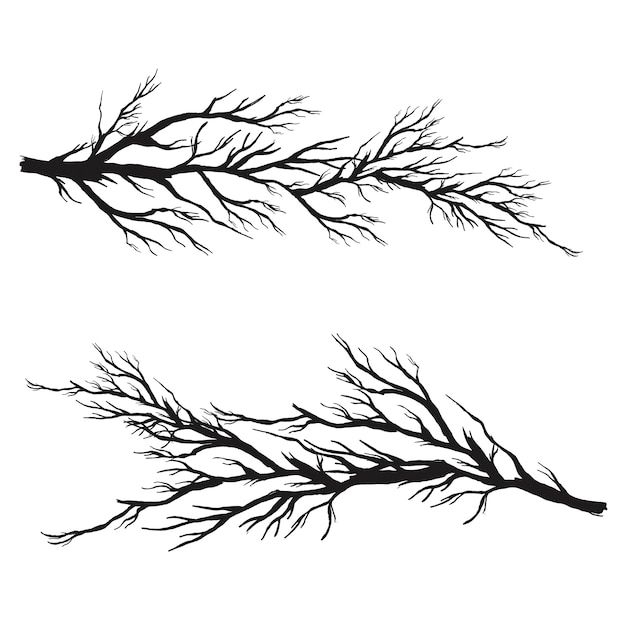 Vector branches collection Free Vector