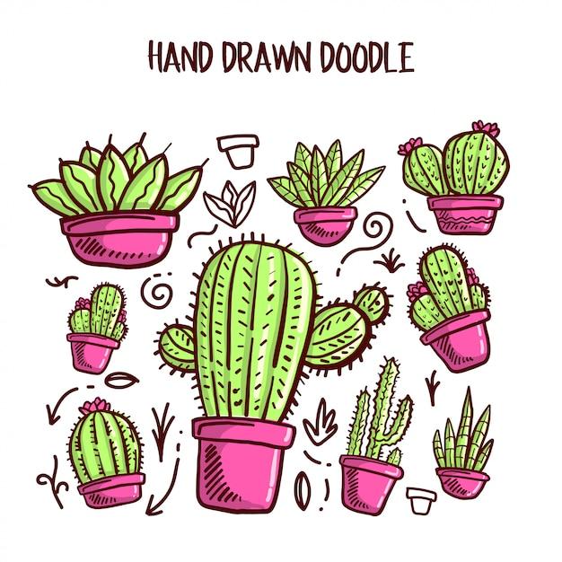 Vector of cactus and succulent set. Premium Vector