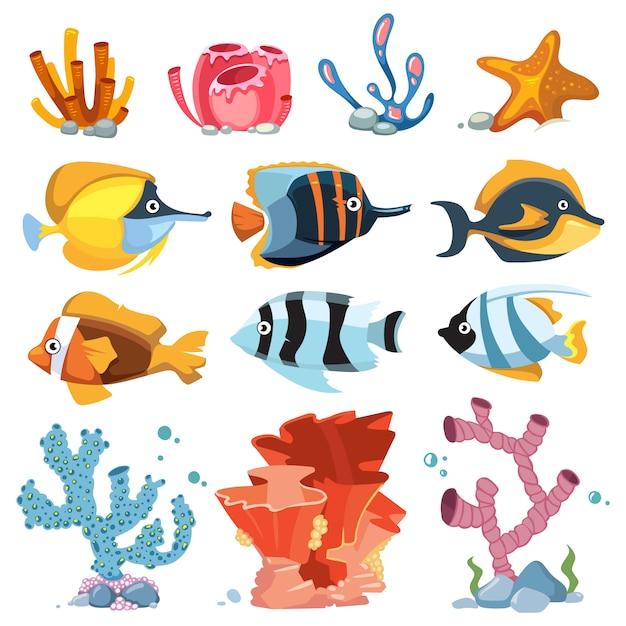 Vector cartoon aquarium decor objects - underwater plants, bright fish Premium Vector