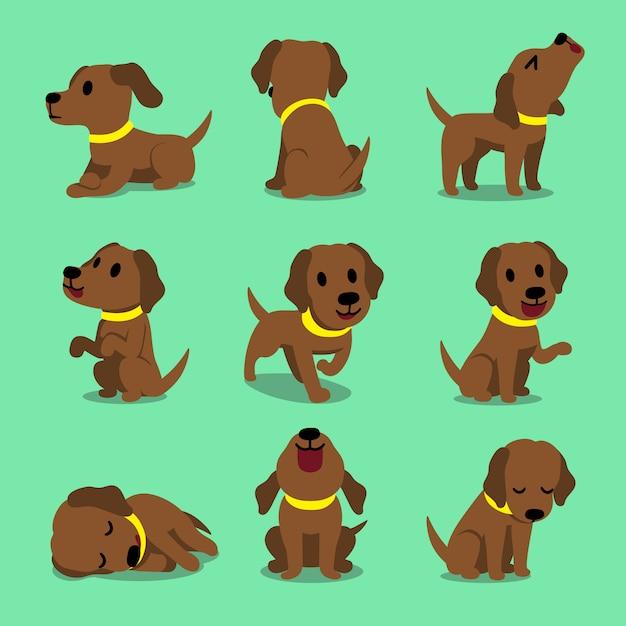 Vector cartoon character brown labrador dog poses Premium Vector