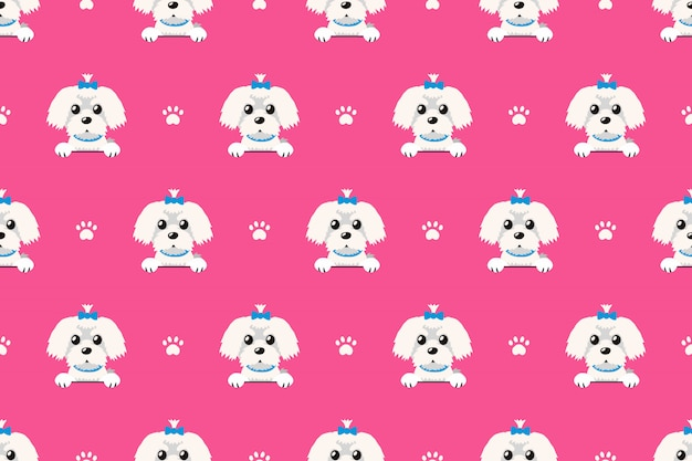 Vector cartoon character maltese dog seamless pattern Premium Vector