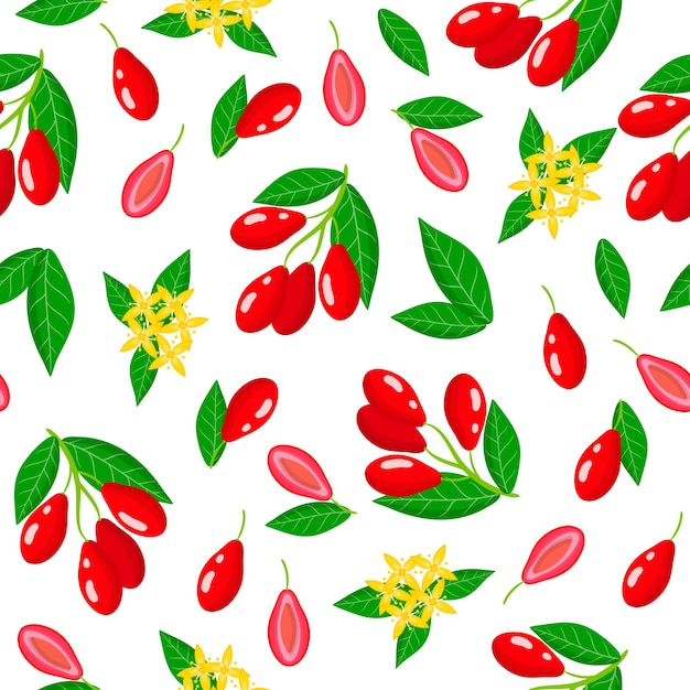 Vector cartoon seamless pattern with cornus mas or dogwood exotic fruits, flowers and leafs Premium Vector