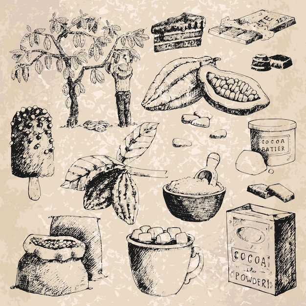 Vector cocoa products hand drawn sketch illustration. Premium Vector