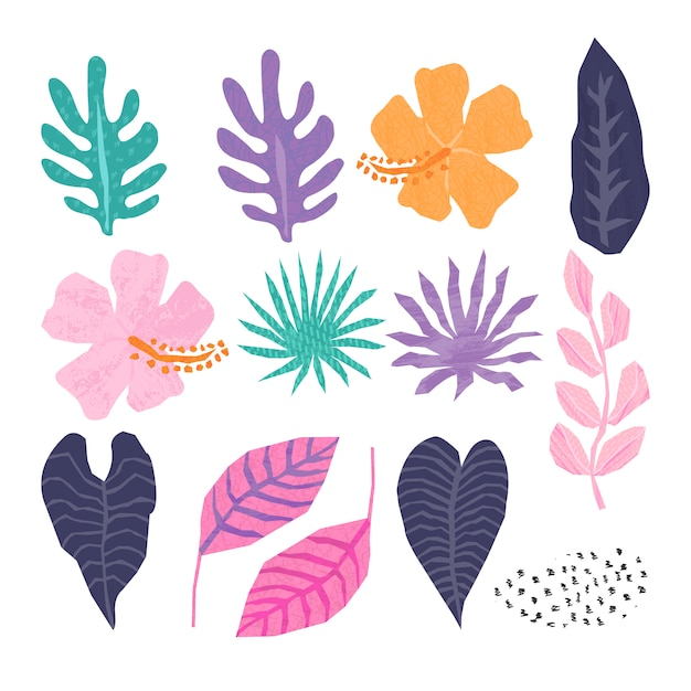 Vector collection of tropical jungle leaves Premium Vector