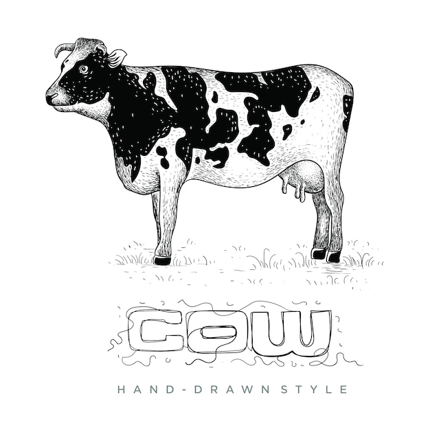 Vector of cows on the grass, hand drawn animal illustration Premium Vector