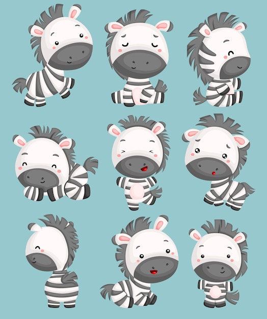 A vector of cute zebras in many poses Premium Vector