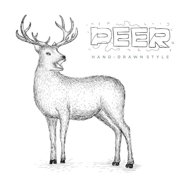 ベクトル鹿の側面図、手描きの動物イラスト Premiumベクター