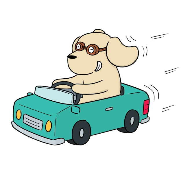 Vector of dog driving car Premium Vector