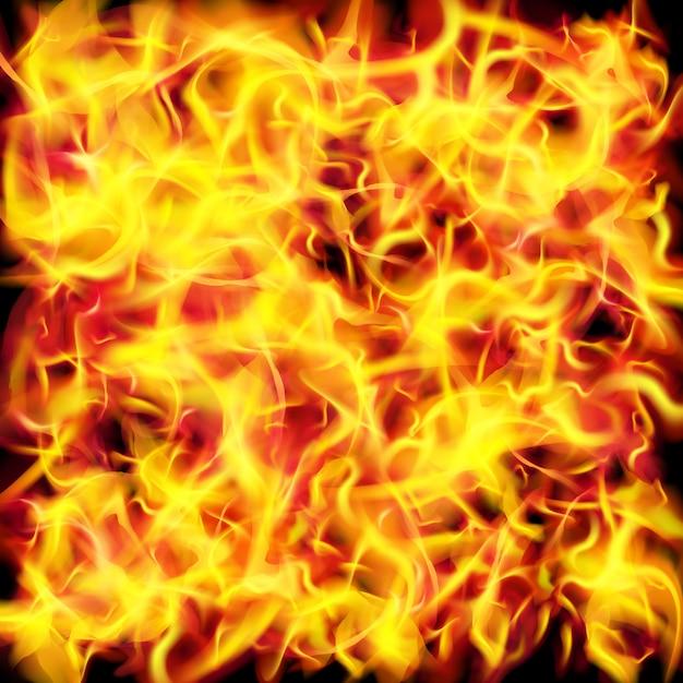 Vector fire flame texture background Premium Vector