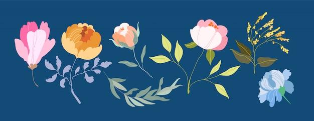 ベクターの花。エレガントなフェミニンな枝と頭花。 Premiumベクター