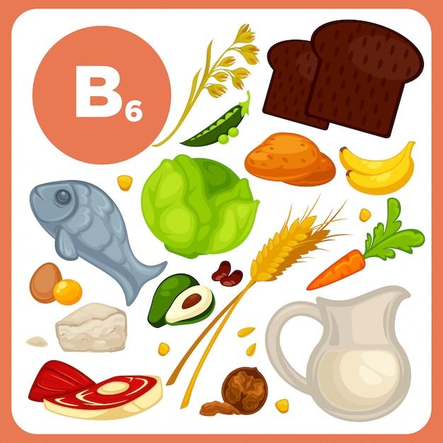 Vector food with vitamin b6  Vector | Premium Download
