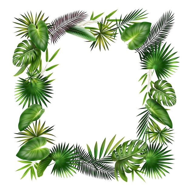 Blocco per grafici di vettore dalle foglie di palma, felce, bambù e monstera verdi, viola delle piante tropicali isolate su fondo bianco Vettore gratuito