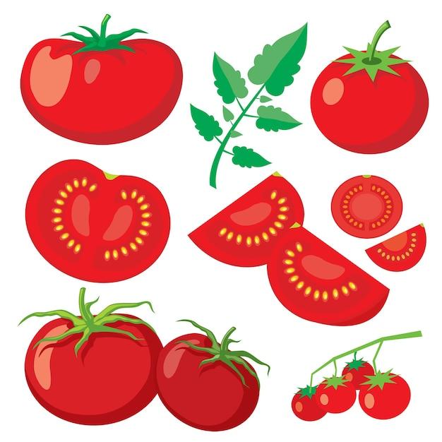 Вектор свежие помидоры в плоском стиле. здоровая растительная пища, органические спелые свежие натуральные иллюстрации Бесплатные векторы