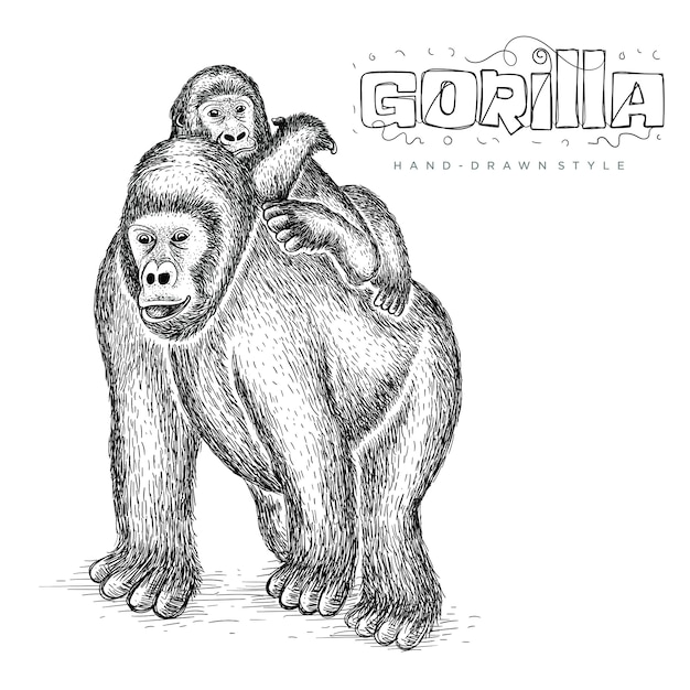 彼女の子供、かわいい動物イラスト手描きを保持しているベクトルゴリラ Premiumベクター