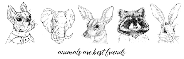 Vector graphic images of animals Premium Vector