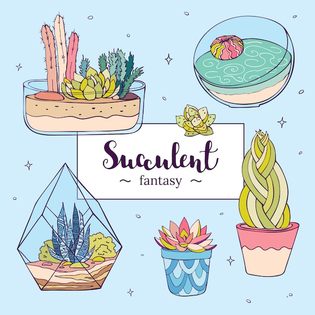 Vector hand drawn succulents Premium Vector