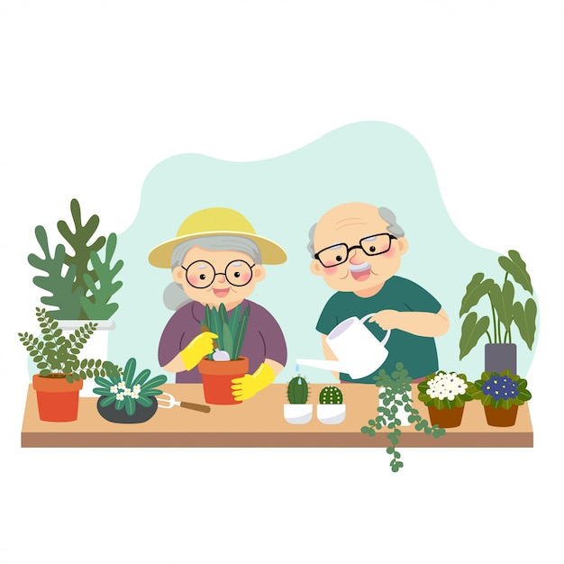Vector illustration of a cartoon happy elderly couple gardening and watering plants at home. Premium Vector