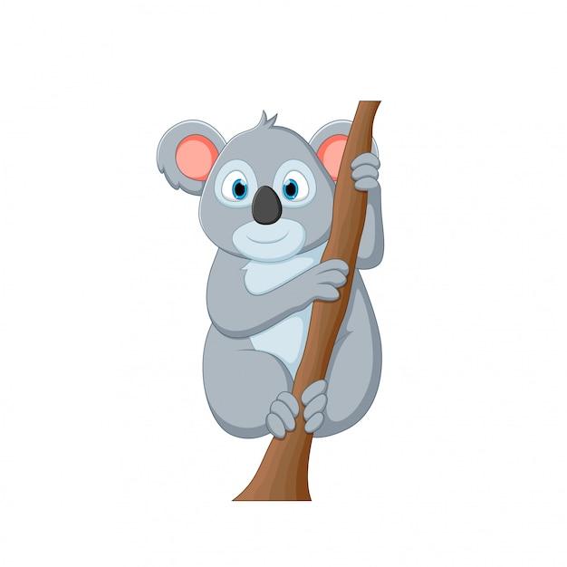 Vector illustration of a cartoon koala Premium Vector