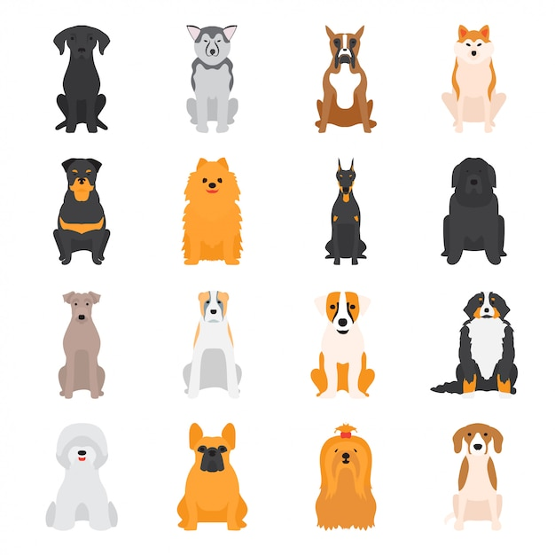 Vector illustration of different dogs breed isolated on white background. Premium Vector