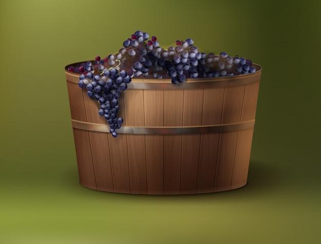 Illustrazione vettoriale di uve da vino appena raccolte in tino di legno su sfondo verde Vettore gratuito