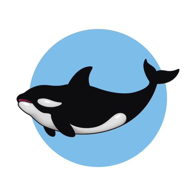 Vector illustration of killer whale Premium Vector