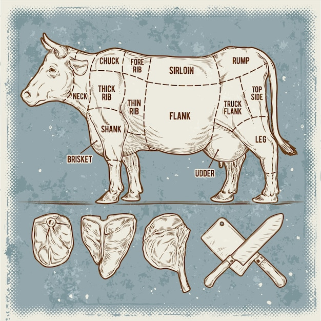 Vector illustration set cuttings of beef. Free Vector