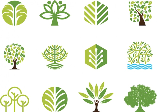 Vector illustration tree Premium Vector