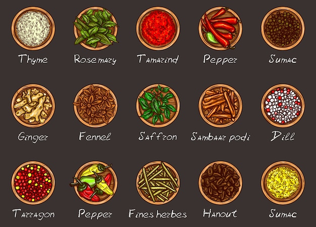 Vector illustration of a variety of spices and herbs in wooden bowls on a black background Free Vector