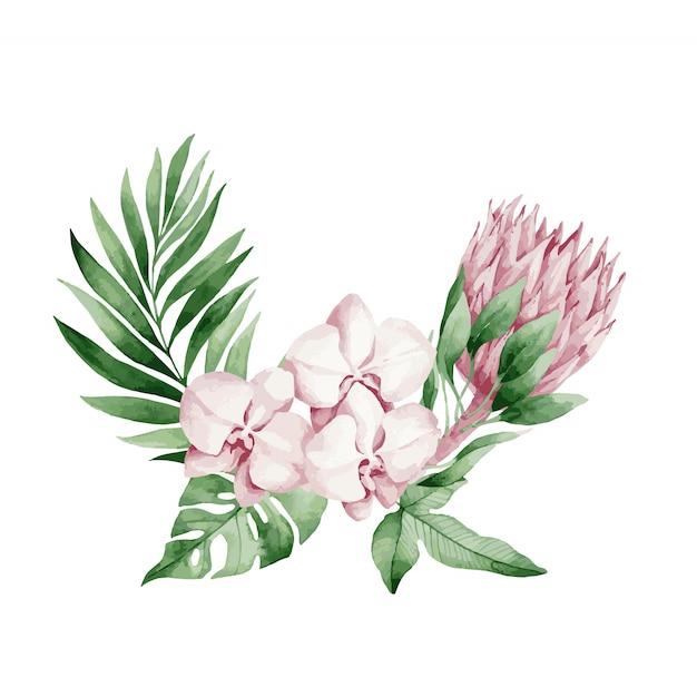 ベクトルイラスト、熱帯の葉と花、白い蘭、ピンクのバラと白いアンスリウム、モンステラとヤシの葉の水彩画の花束。 Premiumベクター