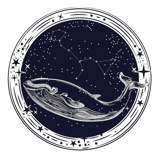 Vector image of whale and constellation of whale Premium Vector
