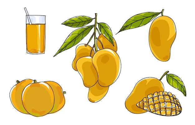 Vector mango set hand drawn cute art illustration Premium Vector