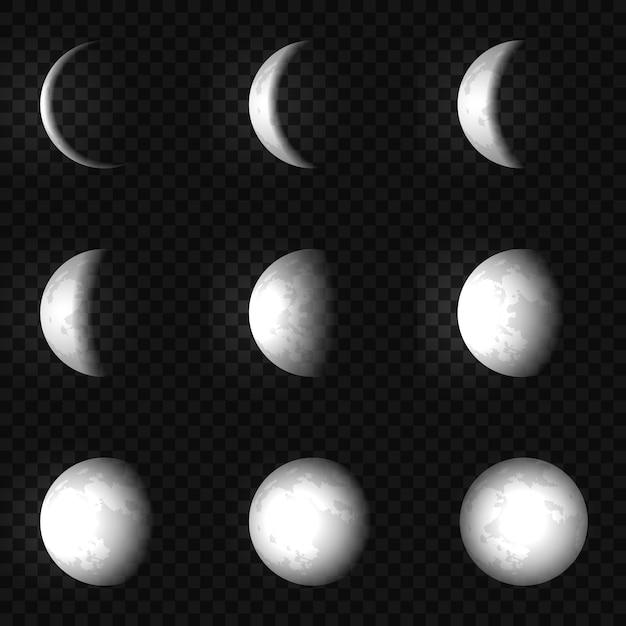 Vector moon phase set illustration Premium Vector
