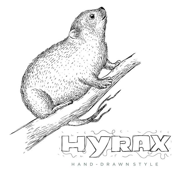 木の幹にハイラックスのベクトル。手描きの動物イラストがリアルに見える Premiumベクター