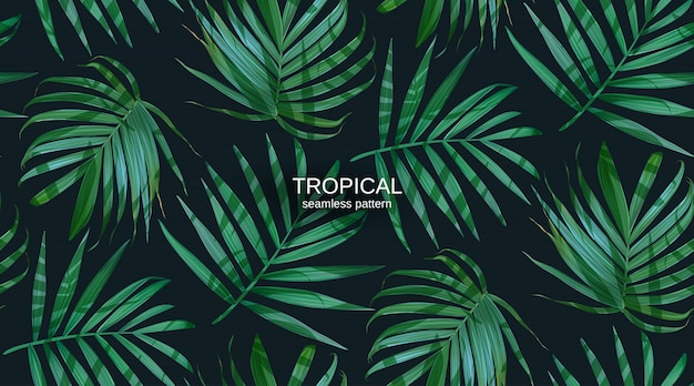 Vector palm frond leaves seamless pattern. Premium Vector