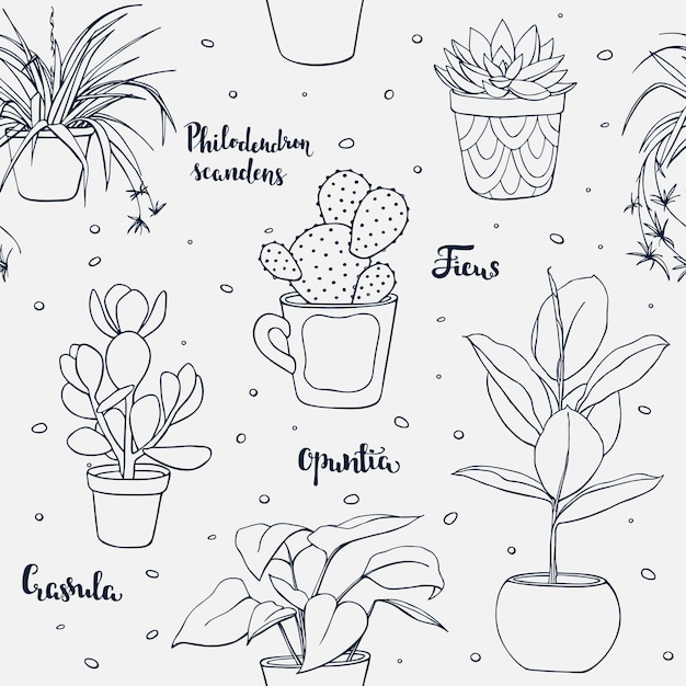 Vector seamless home plants pattern Premium Vector