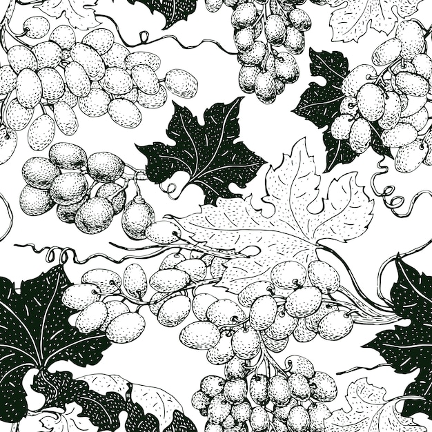 Vector seamless pattern with grape. can be use for background, design, invitation, banner, packaging. vintage hand drawn illustration Premium Vector
