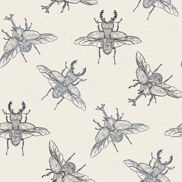 Vector seamless pattern with hand drawn beetles made in retro style. beautiful ink drawing - vector Premium Vector