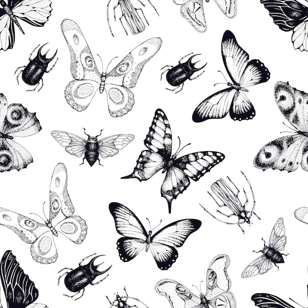 Vector seamless pattern with insects and butterflies. entomological background. hand drawn vintage illustration. Premium Vector
