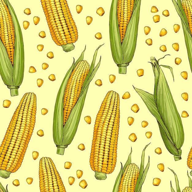 Vector seamless patterns with illustration of corn. vegetable pattern with corncob Premium Vector