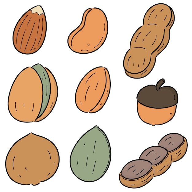 Vector set of beans and nuts Premium Vector