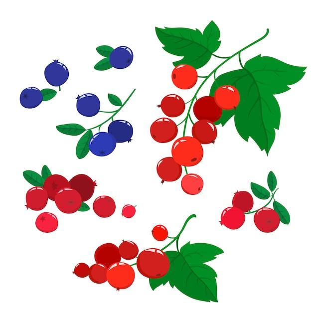 ベクトルセット漫画クランベリーとブルーベリーと緑の葉が白い、明るい果実の枝に分離されました。 Premiumベクター