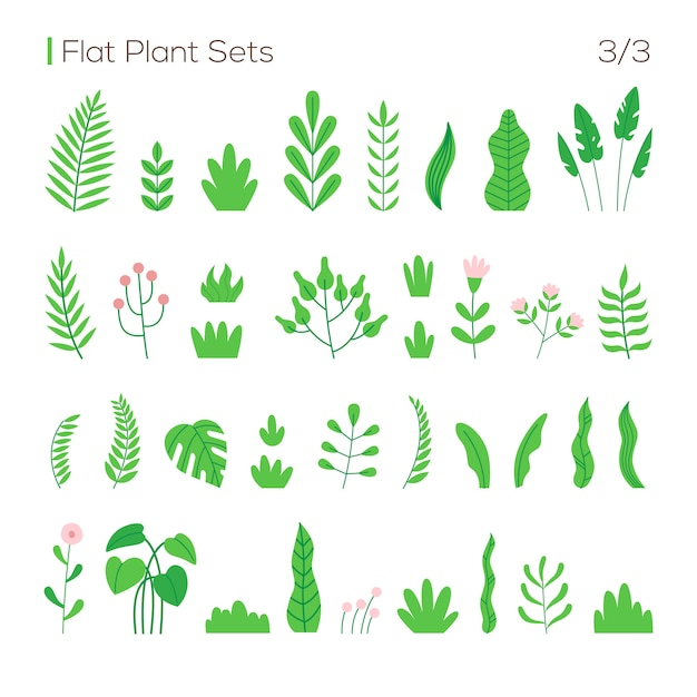 Vector set of different leaves and plants in a flat style Premium Vector