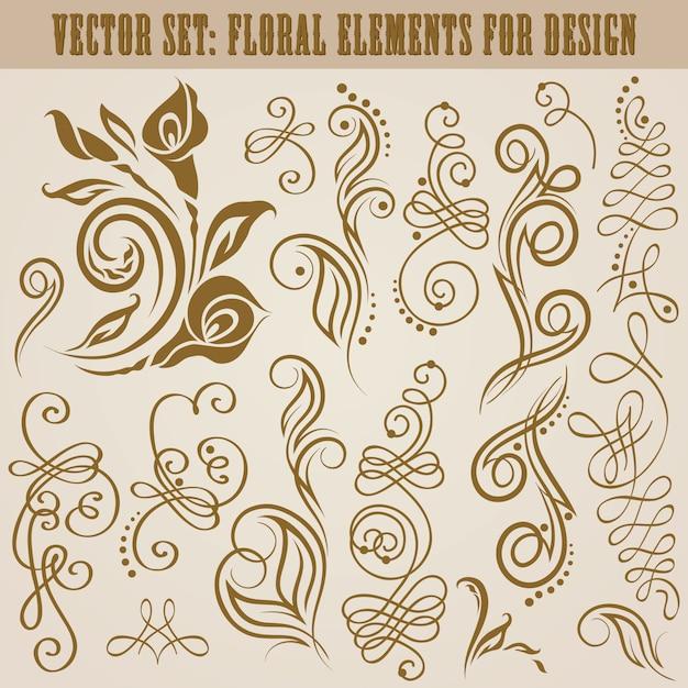 Vector set of floral elements Premium Vector