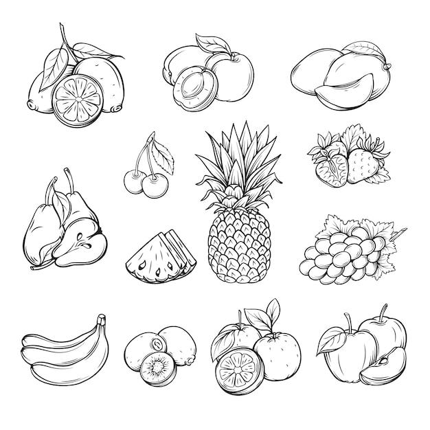 Векторный набор различных рисованной фруктов, Premium векторы