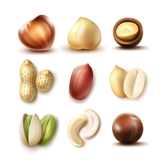 Векторный набор различных орехов: целые и половину фундука, макадамии, фисташки, арахиса, кешью сверху, вид сбоку, изолированные на белом фоне Бесплатные векторы