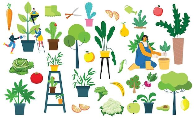 Векторный набор деревенских людей с экологически чистыми продуктами питания, цветами и растениями Premium векторы