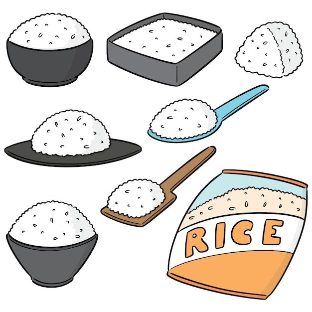 Vector set of rices Premium Vector