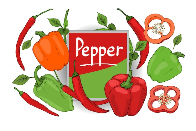 Vector set with red, green, orange pepper. isolated fresh pepper, paprika, chilli with stems, leaves, seeds, whole and sliced. summer harvest. Premium Vector
